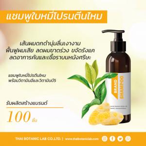 รับผลิตแชมพูใบหมี่โปรตีนไหม Bai Mee Silk Protein Shampoo