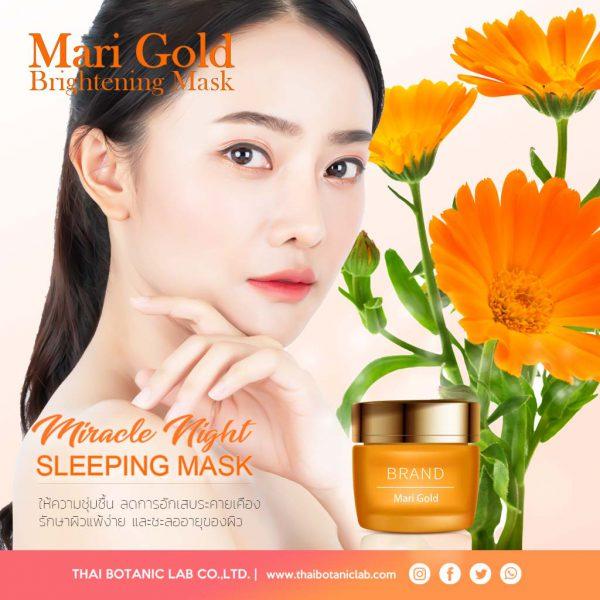 ผลิตมาส์กหน้าดอกดาวเรือง Marigold Sleeping Mask